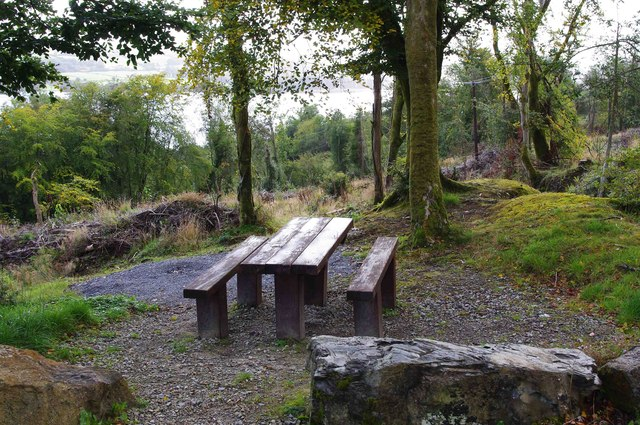 Kids Table Ballycuggaran Forest Recreation Area -... © P L Chadwick