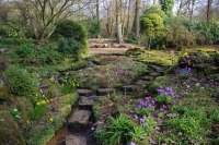 The sandstone rock garden at...  Phil Champion cc-by-sa/2 ...