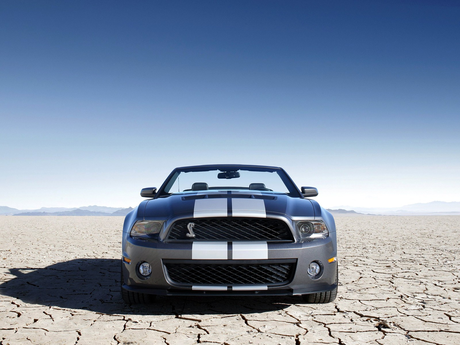Mustang Car Wallpaper Download Ford Mustang Shelby Gt500 Convertible 2009 2010 2011