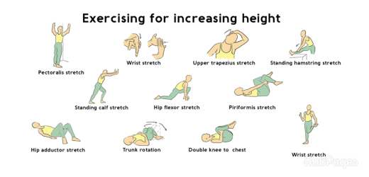 Stretching exercises to grow height