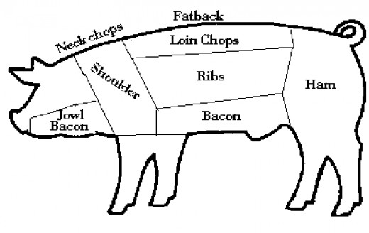 parts of a pig diagram cuts of meat