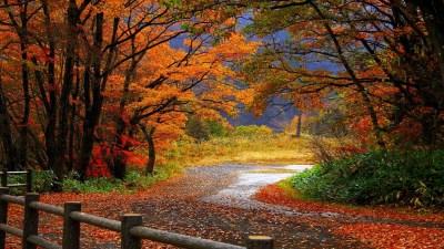 Autumn Wallpapers   Best Wallpapers