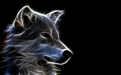 Wolf Wallpapers | Best Wallpapers