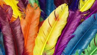 Colorful Wallpapers | Best Wallpapers