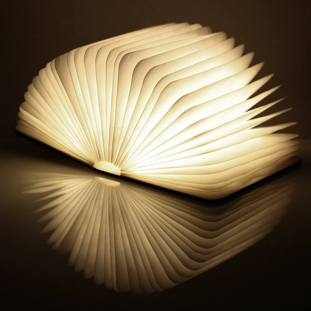 Boog Lamp Gingko Led Smart Book Light | Iwoot