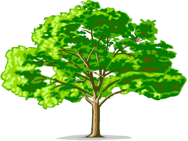 Lincoln Family Tree - ThingLink