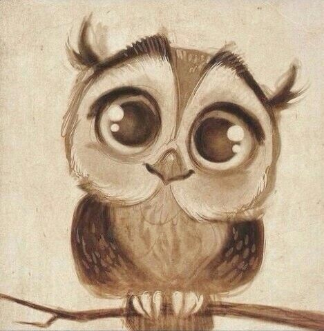 Cute Girl Wallpapers Pinterest Drawing Cute Art Owl Image 4223060 By Rayman On