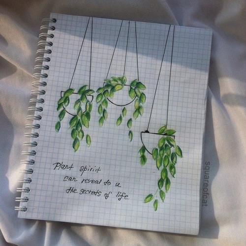 Iphone 6 Wallpaper Life Quotes Creative Draw Drawing Green Nature Image 4097989 By