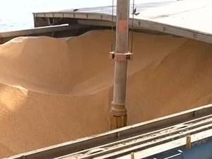 Foram transportados, de janeiro a setembro, quase 1,7 milhão de toneladas de grãos (Foto: Reprodução/TV Tapajós)