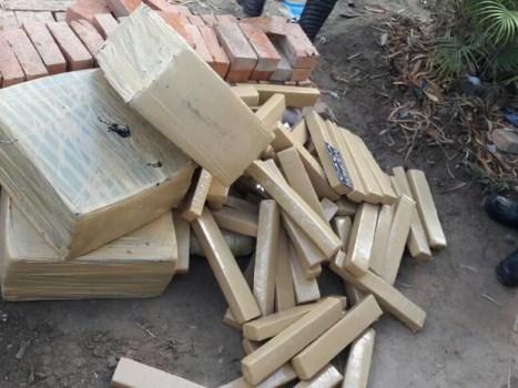 Cerca de 300 kg de maconha foram apreendidos na zona rural de Bezerros (Foto: Divulgação/Polícia Militar)