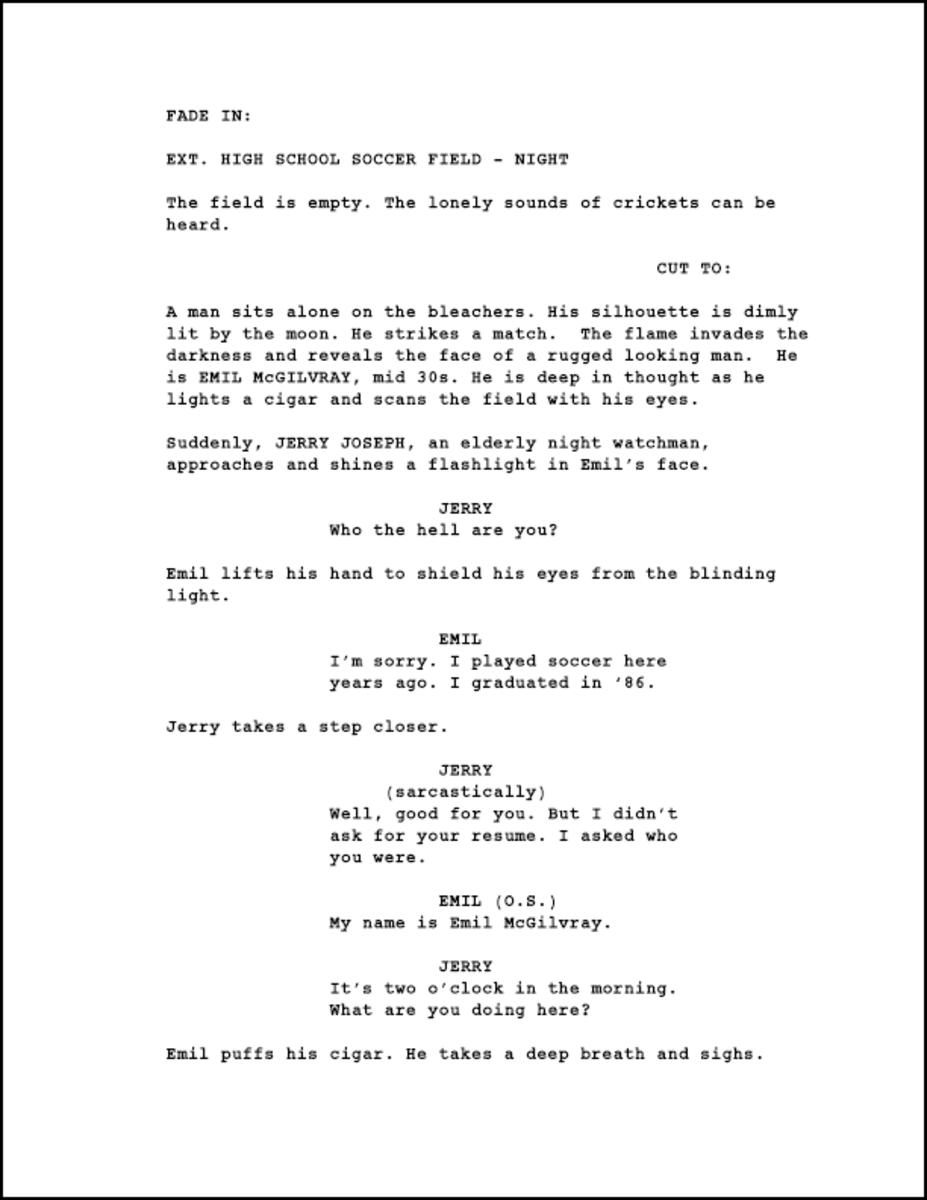 How to Write a Stellar Short Video Script - The Scripted Blog