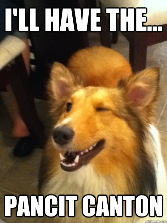 Girl Praying To God Wallpaper Winking Collie Memes Quickmeme