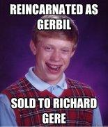 Meme Richard Gere Gerbil