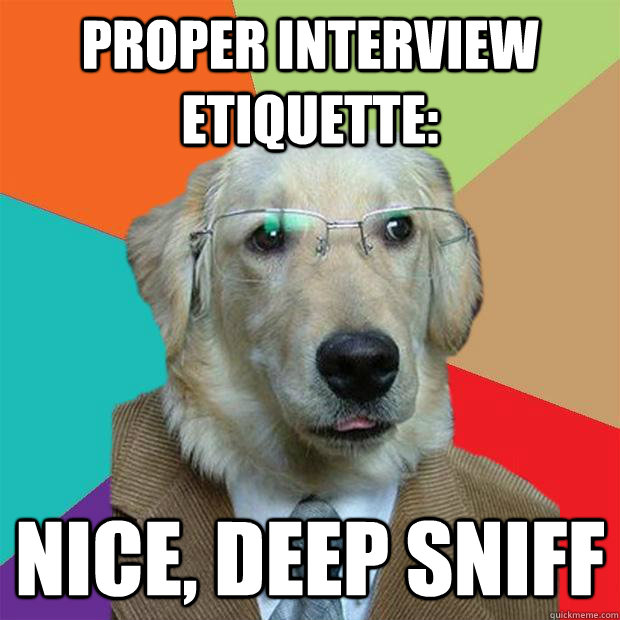 proper interview etiquette nice, deep sniff - Business Dog - quickmeme