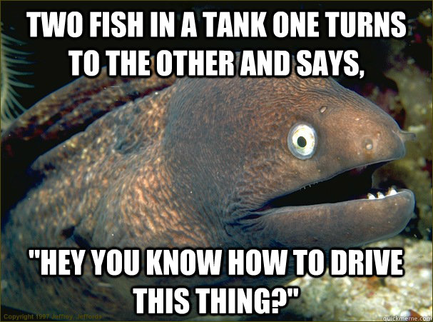Two fish in a tank one turns to the other and says,