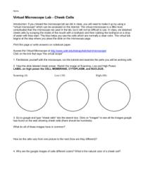 Worksheet. Microscope Lab Worksheet. Hunterhq Free ...