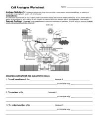 worksheet. Cell Analogy Worksheet. Worksheet Fun Worksheet ...