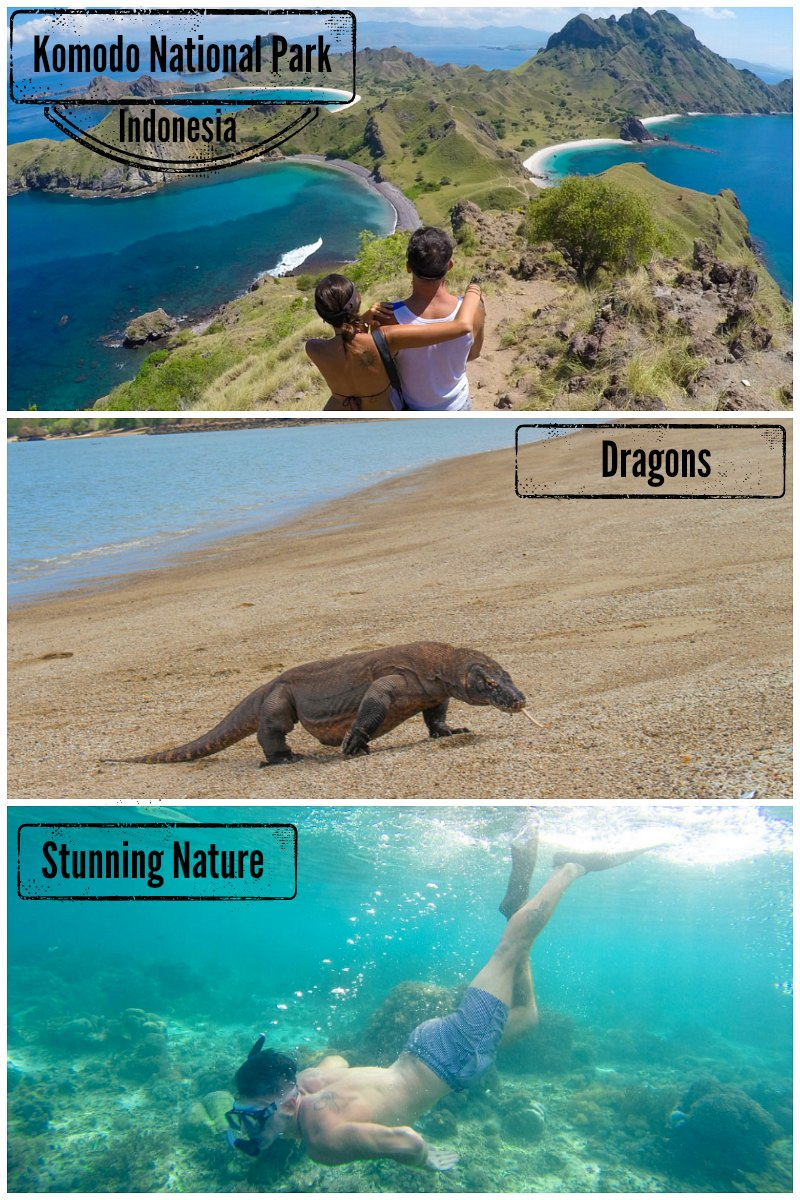 Indonesia Trip How To Plan A Trip To Komodo Island Dragons Diving Trekking