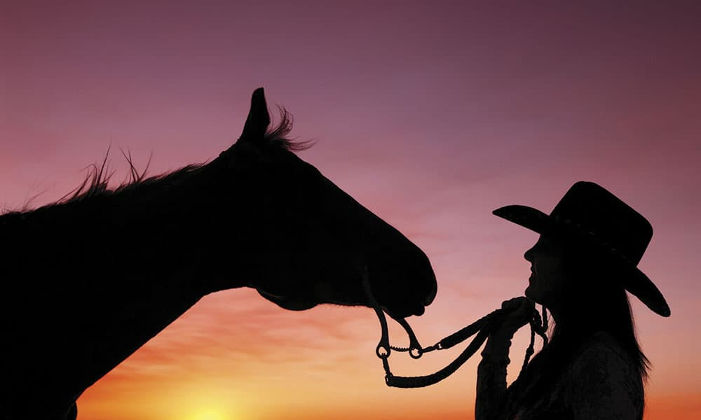 Versatility Ranch Horse Competitions Cowgirl Magazine