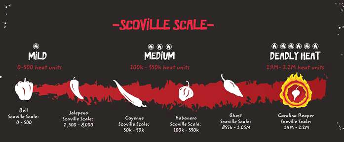 The World\u0027s Spiciest Chips Are A World Of Hurt! One Chip, One Coffin