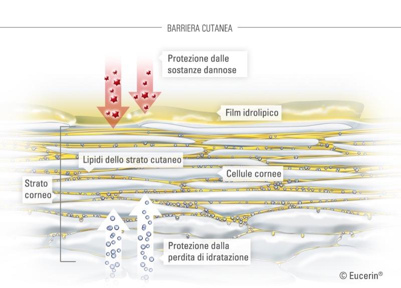 ClioMakeUp-proteggere-pelle-inverno-freddo-consigli-prodotti-6