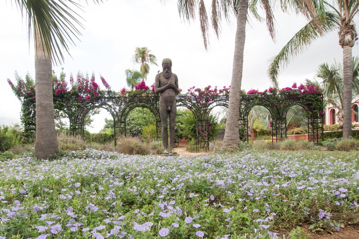jardin vertical casero c mo hacer un jard n el blog de los mejores consejos y jardineria alicante 4 Visita Al Jardín De L Albarda Pedreguer Alicante Guía Repsol
