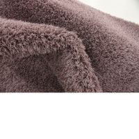 Modern Shaggy Carpet Solid Plush Shag Area Rug ...