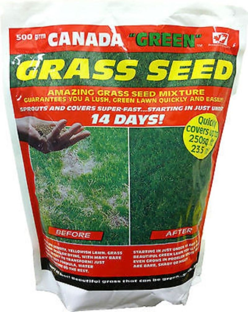 Large Of Canada Green Grass