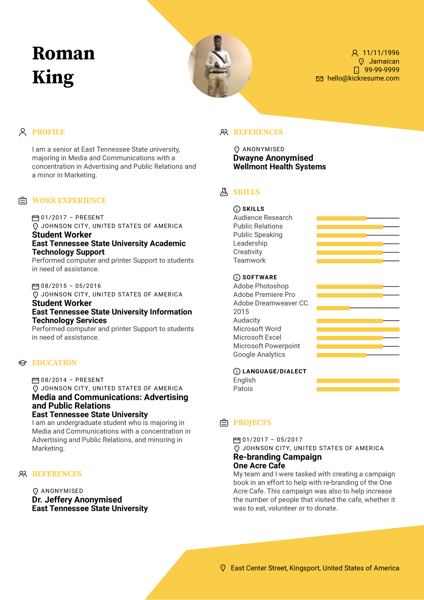 draft cv template