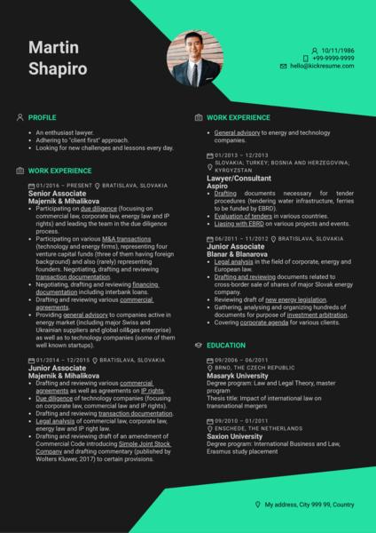 example resume consultant intern