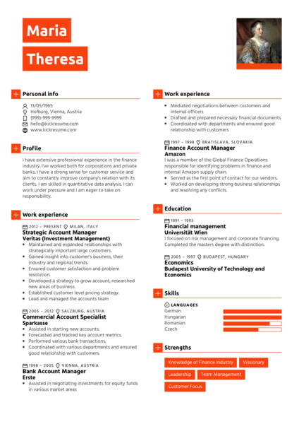 sample resume mid level account manager