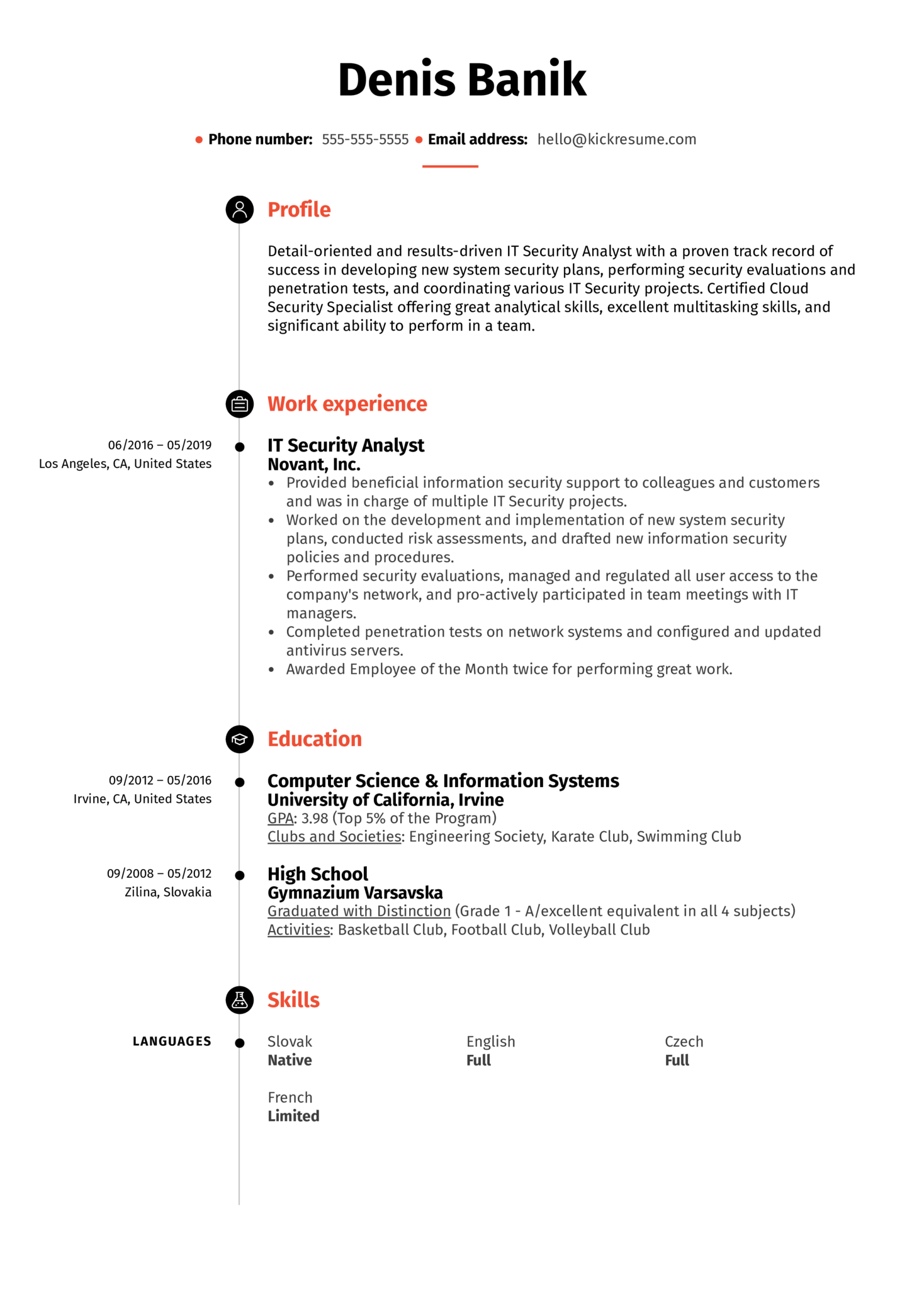 network analyst example resume