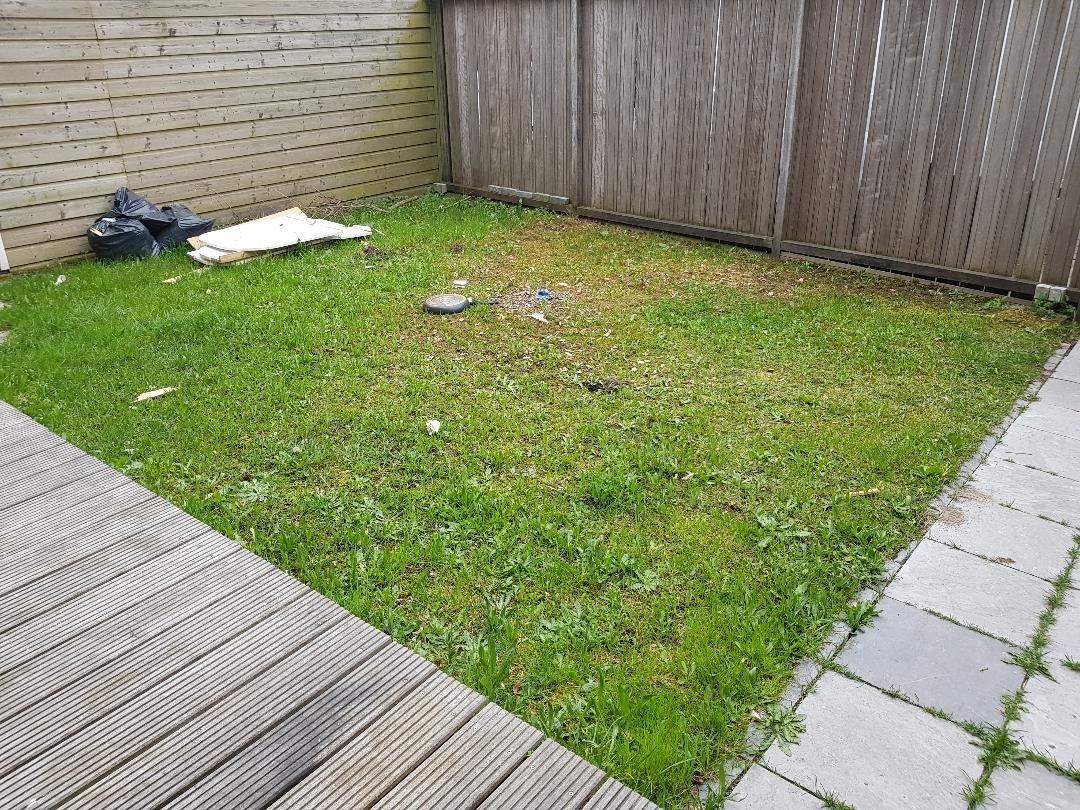 Gras In Tuin : Gras maai eens een stuk niet u tuin over al het moois in
