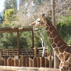 Active Life Amusement Parks Active Life Zoos Active Life Aquariums