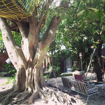 Everglades Hostels and Tours - 54 Photos  30 Reviews - Hotels - 20