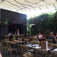 The Patio on Lamont Street - 842 Photos - Breakfast ...