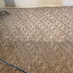 Daves Carpet Cleaning 15 Photos 28 Reviews Carpet