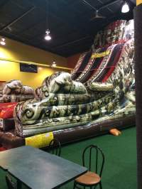Photos for Backyard Inflatables - Yelp