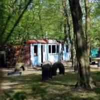 Volkspark Jungfernheide - 73 Photos & 14 Reviews - Parks ...