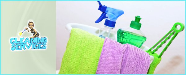 Good Professional Cleaning Ladies - Home Cleaning - Brampton, ON