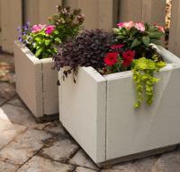 DIY Concrete Planters - Bob Vila