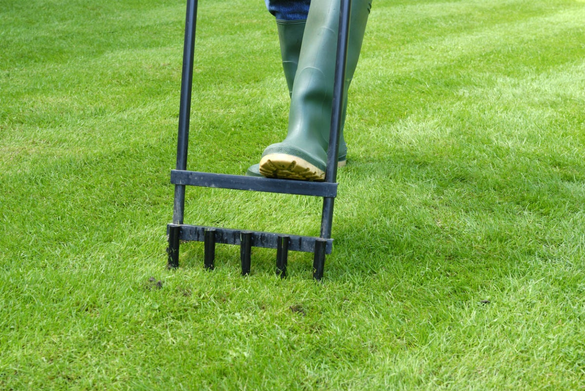 Grass Aerator When To Aerate The Lawn Solved Bob Vila