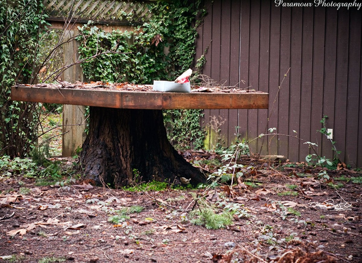Fullsize Of Tree Stump Table