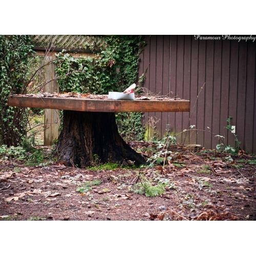 Medium Crop Of Tree Stump Table