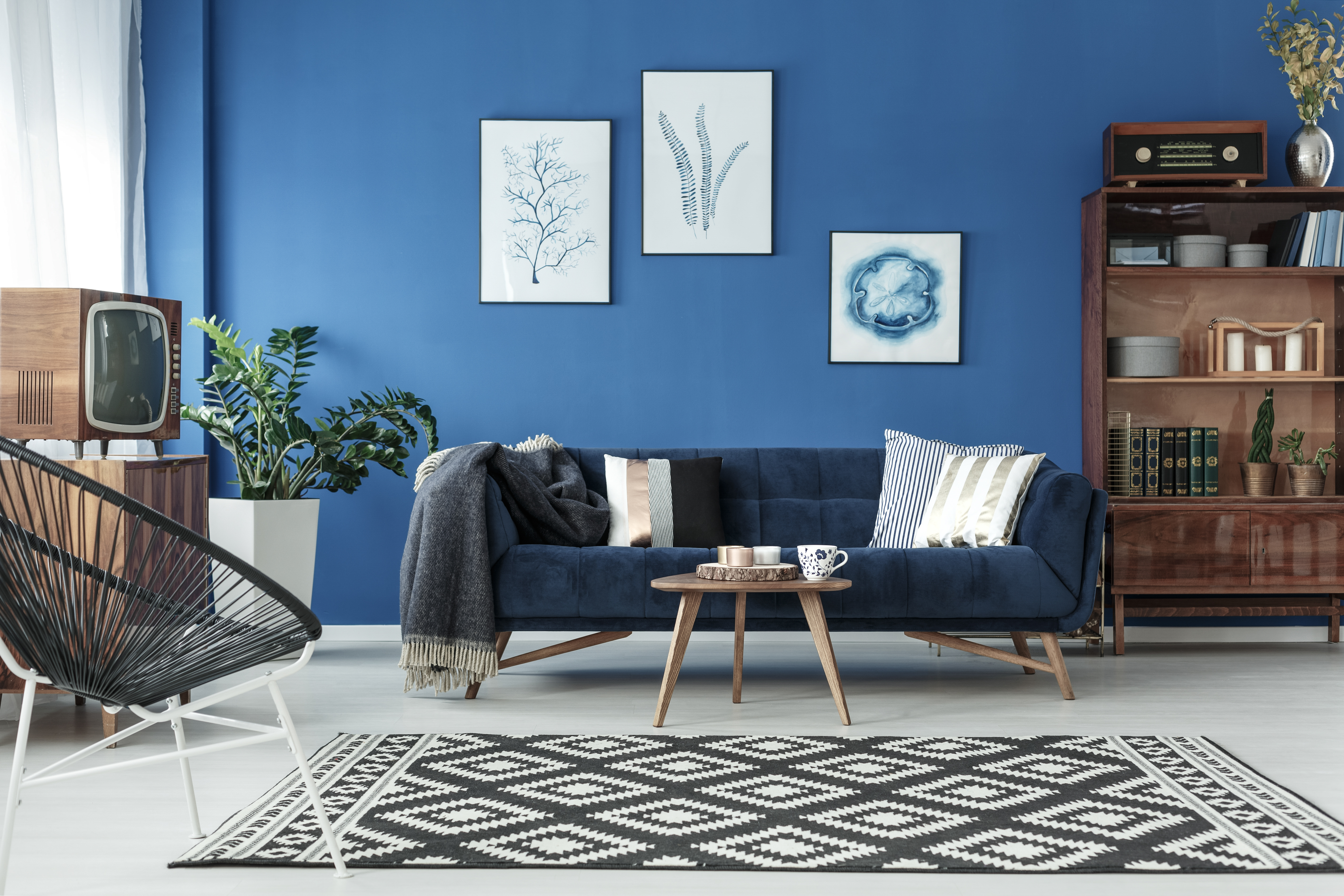 Big Sofa Island Greige How To Choose A Wall Color With Navy Blue Furniture Home Guides