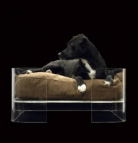 Bow-WOW! 20 Modern Pet Beds for Your Furry Friends | Brit + Co