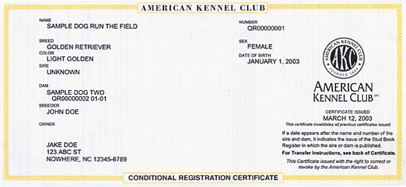 Conditional Registration Certificate and Pedigree \u2013 American Kennel Club