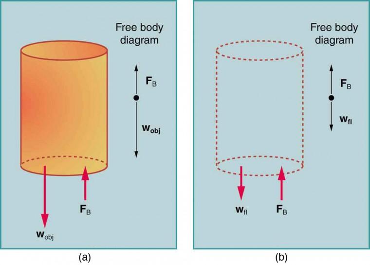 Archimedes Principle Physics