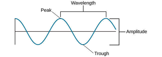 Waves and Wavelengths Introduction to Psychology