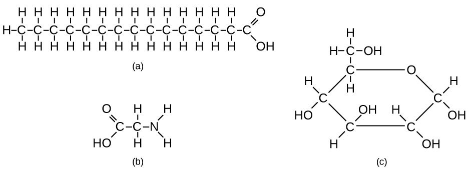 Carbon and Carbon Bonding Biology for Non-Majors I - carbon bonds